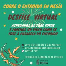 DESFILE DE ENTROIDO VIRTUAL - Concello de Mesia 2021
